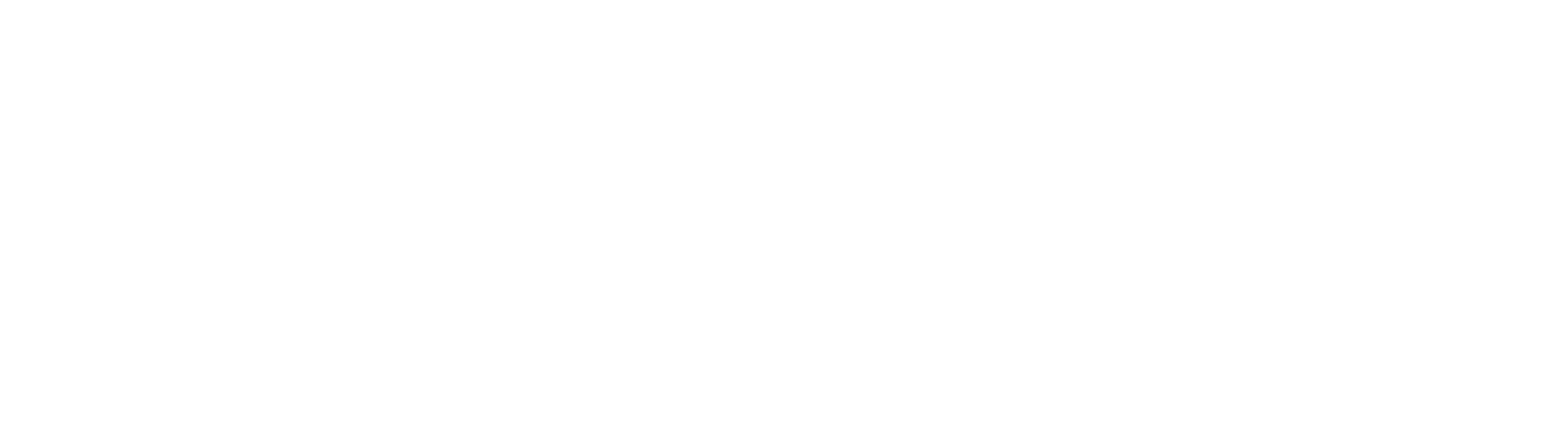 oneAVteam